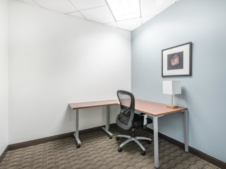 Regus Day Office in SouthPark