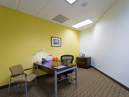 Regus Virtual Office in Two Post Oak Central - view 4