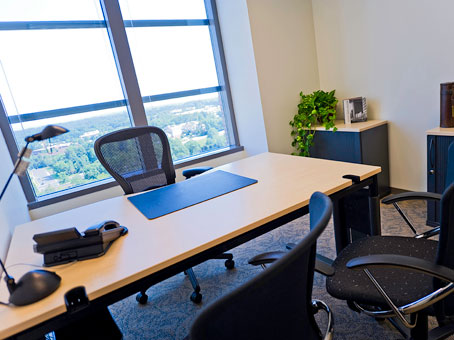 Regus Virtual Office in Reston Town Center II - view 6