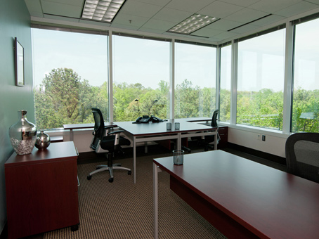 Regus Business Centre in Glenlake - view 7
