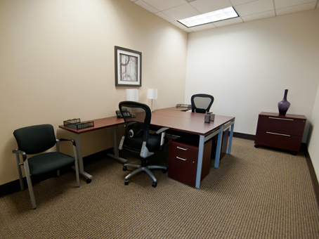 Regus Business Lounge in Glenlake