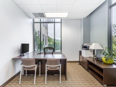 Regus Day Office in Briarcliff