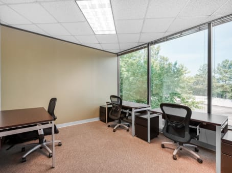 Regus Business Lounge in Forum I (Office Suites Plus) - view 9